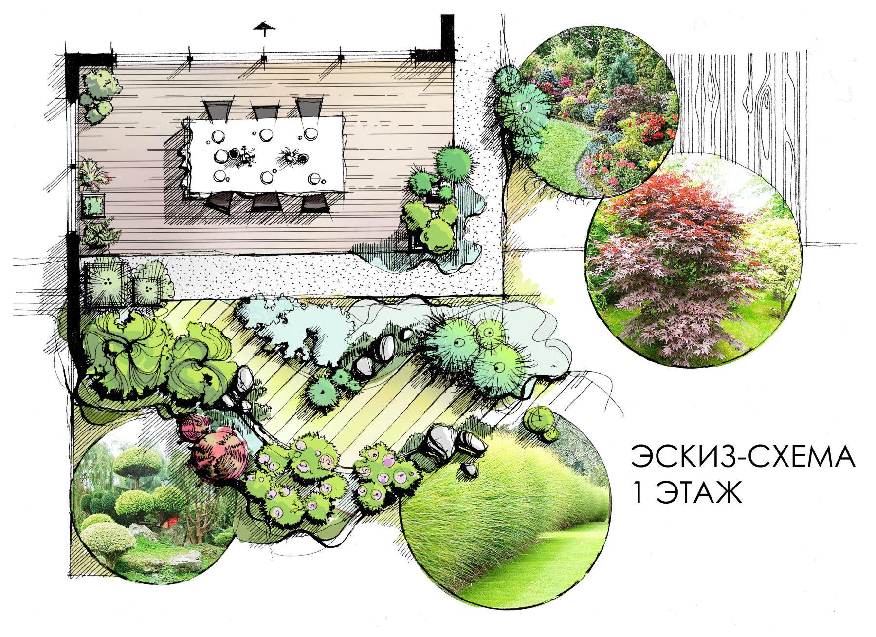 Эскиз-схема по ландшафту для загородного дома
