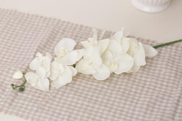 Орхидея фаленопсис белый (в наличии 150 шт) Цена =40 руб/шт